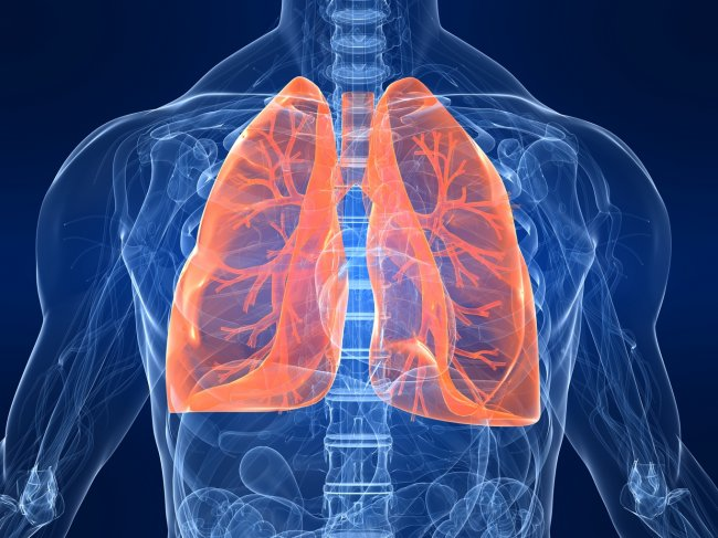 THE CRO SPECIALIZED IN RESPIRATORY DISEASES AND AEROSOL THERAPY